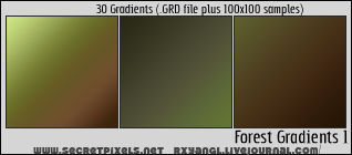 Forest Gradients 1