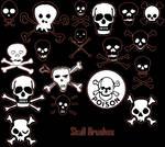 +Skull Brushes+