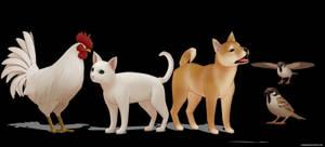 Animals DL