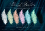 Feathers_lauraypablo