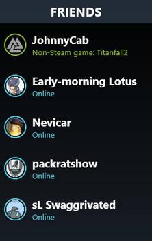 Steam Friends List