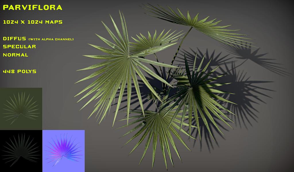 Free Parviflora pack by Yughues