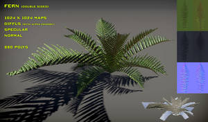 Free Fern Pack V2 by Yughues