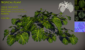 Free Tropical plant Pack