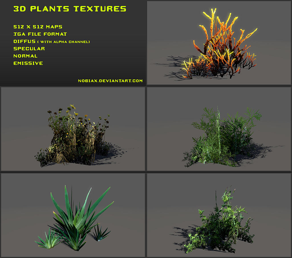 Free 3D plants textures 01 by Nobiax