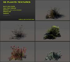 Free 3D plants textures 02
