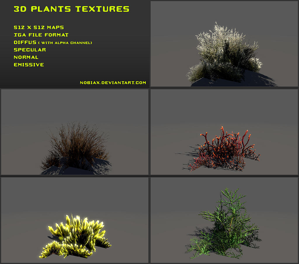 Free 3D plants textures 03 by Nobiax