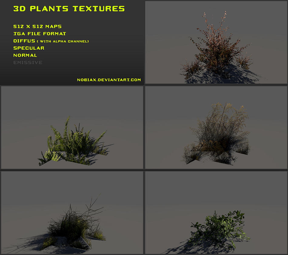 Free 3D plants textures 04 by Nobiax