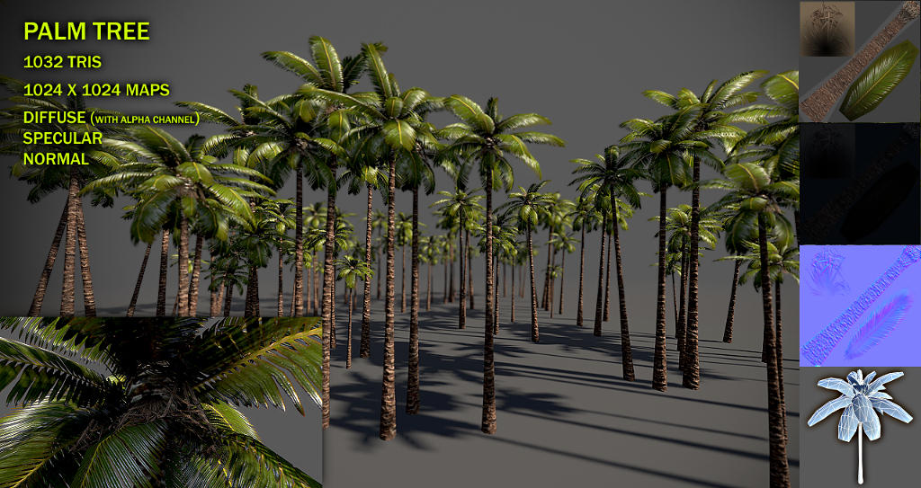 Palm tree v2 by Nobiax