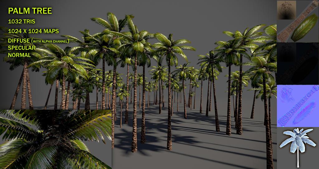 Palm tree v2 by Nobiax