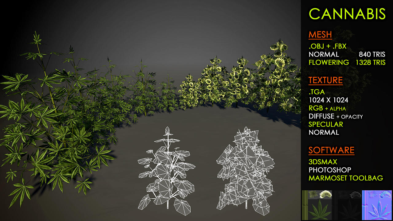 Free Cannabis plants by Nobiax