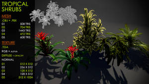 Tropical shrubs
