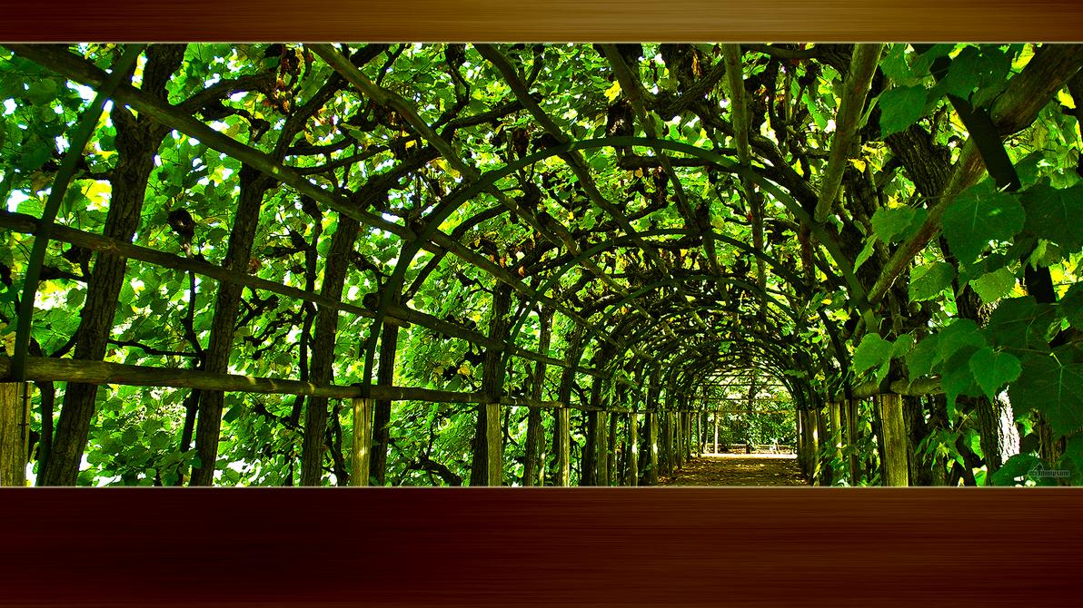 Mx Wallpaper Nature 01 By Maxumipsum70