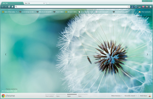 Macro Dandelion Google Chrome Theme by vrkm2003 on DeviantArt