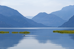 The Calm of a Lake
