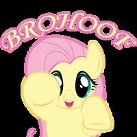 Brohoof me! Fluttershy edition by SundownGlisten