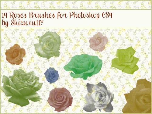 14 Roses Brushes for Photoshop CS4 by Shizuru117