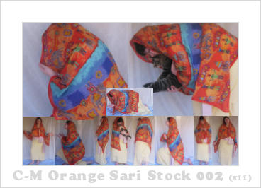 C-M Orange Sari 002 by crowned-meadow