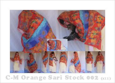 C-M Orange Sari 002 by crowned-meadow