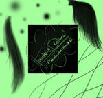 2 Sample Horsehair brushes