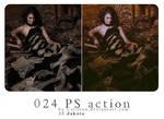 Carllton action 024
