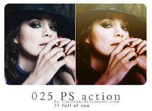Carllton action 025
