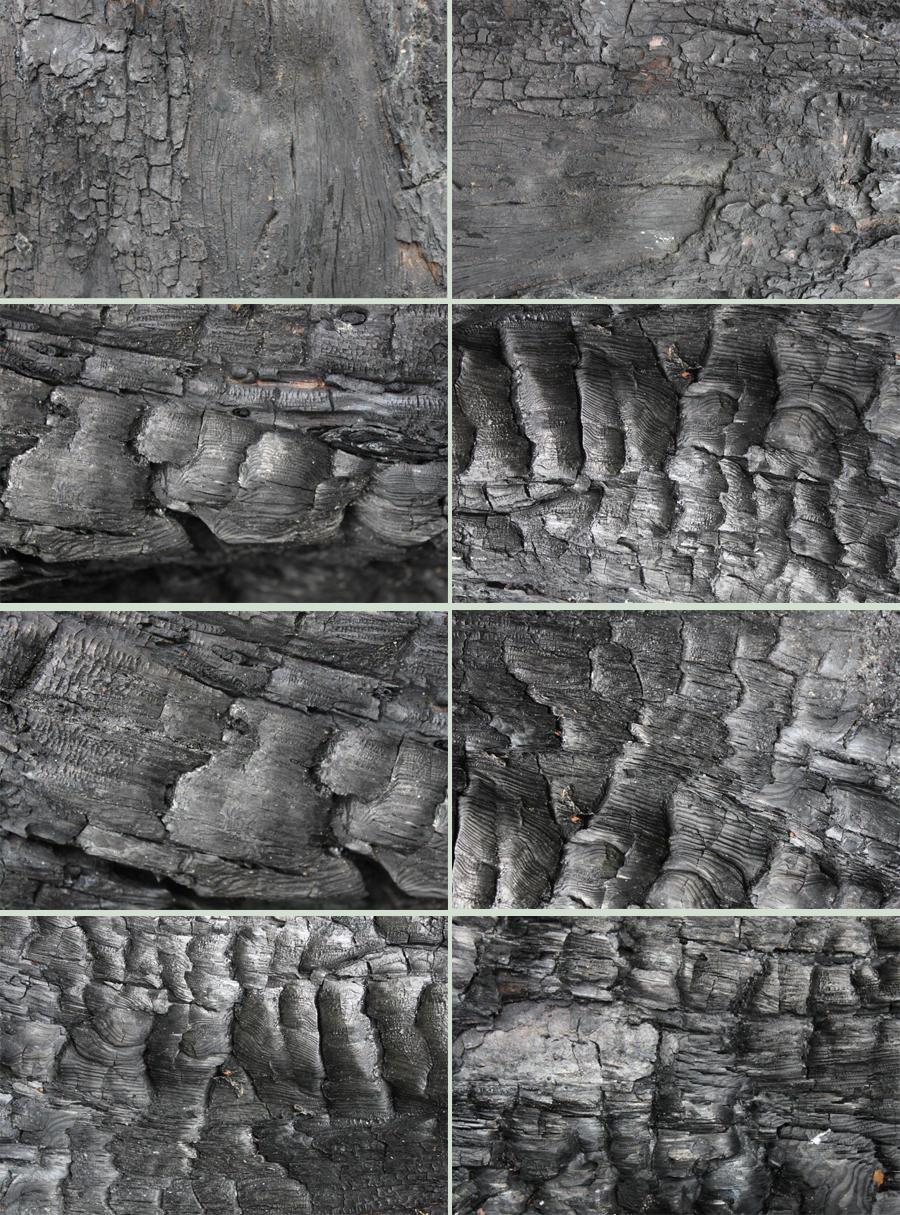 Burnt Wood Textures by Tasastock