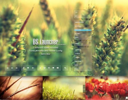 DS.Launcher