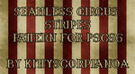 Seamless Circus Stripes Pattern