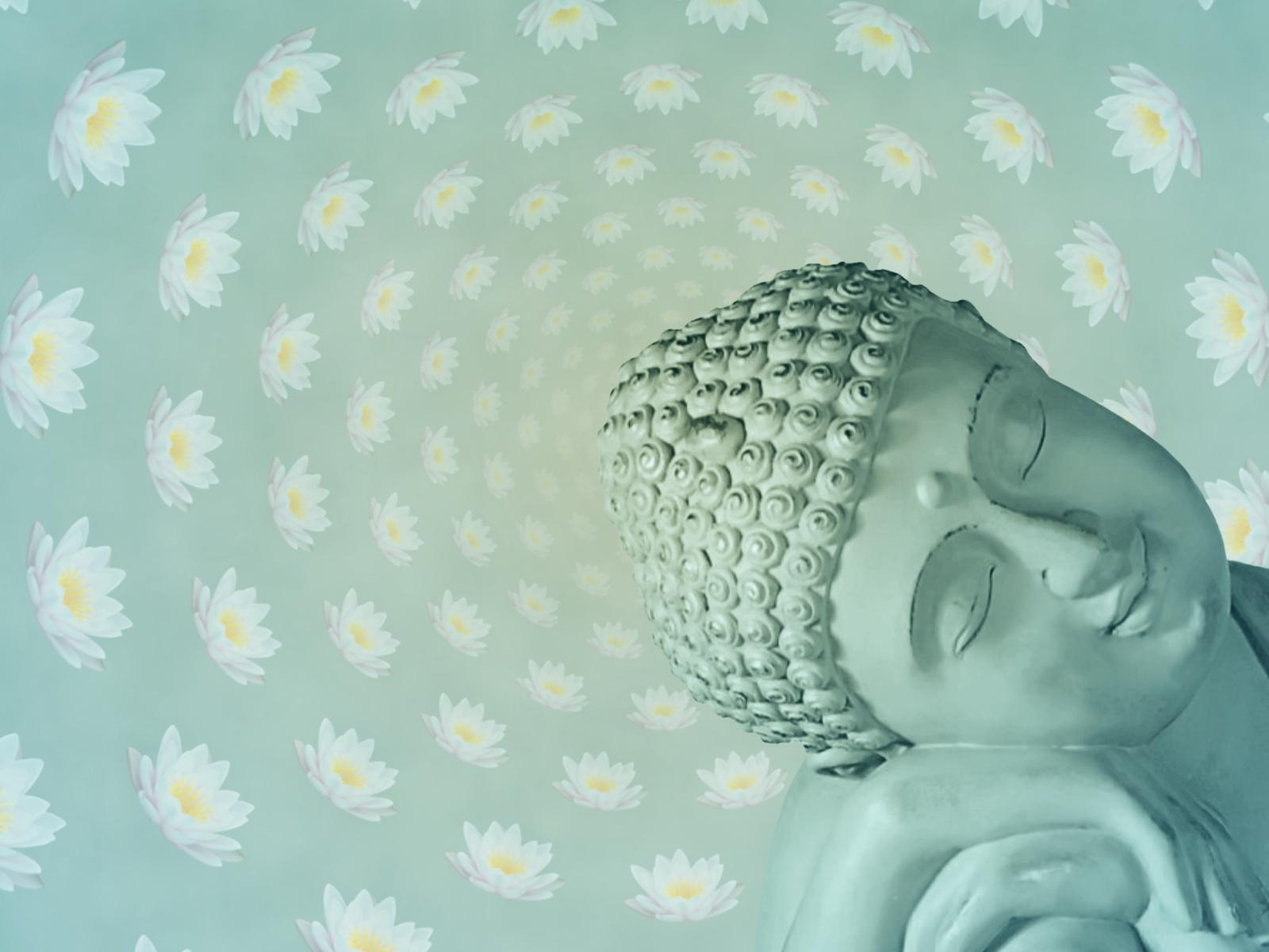 Lotus Flower Buddha Lotus Flower Buddha Qu...