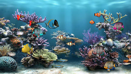 Sea Life 2 for xwidget (full animated) by Jimking