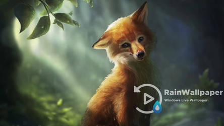 Cute Fox by Jimking