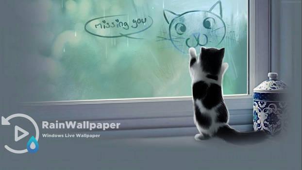 Miss You Cat
