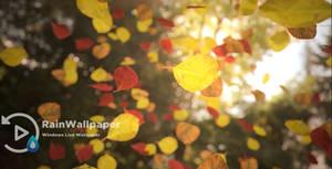 Fall Leaves lwp