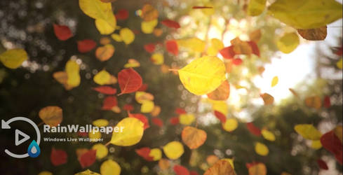 Fall Leaves lwp by Jimking