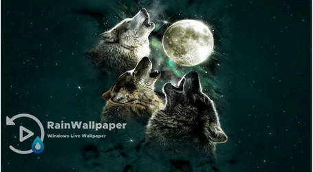 Wolves Full Moon by Jimking