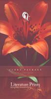 Resurgere Flora 9b