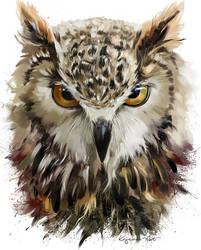 Owl by Kajenna