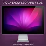 Aqua Snow Leopard Final