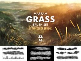 Marram Grass brush set