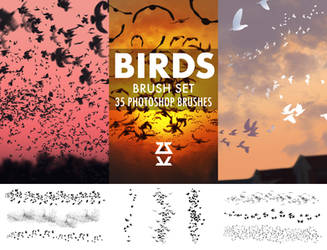 Birds Brush Set
