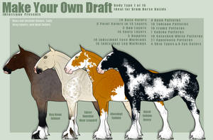Make Your Own Draft: 1st Body