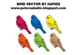 bird 1 vector by starsys