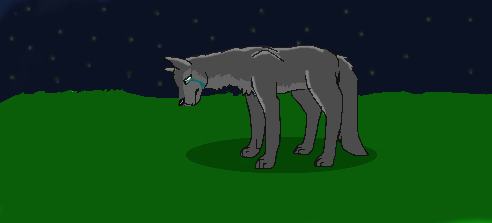 Worn out by Wolf--Prime