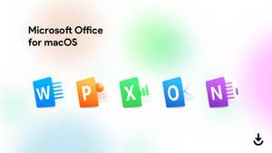 Office 16 For macOS Sierra