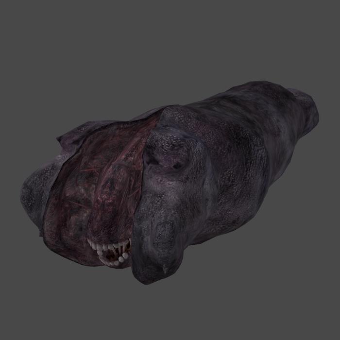 [Silent Hill 3] Splitworm ORIGINAL BONES by shprops4xnalara
