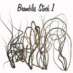 Brambles Stock 1 by TinusDream