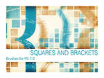Squares and Brackets PS 7.0
