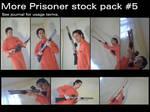 Prisoner Stock Pack #5
