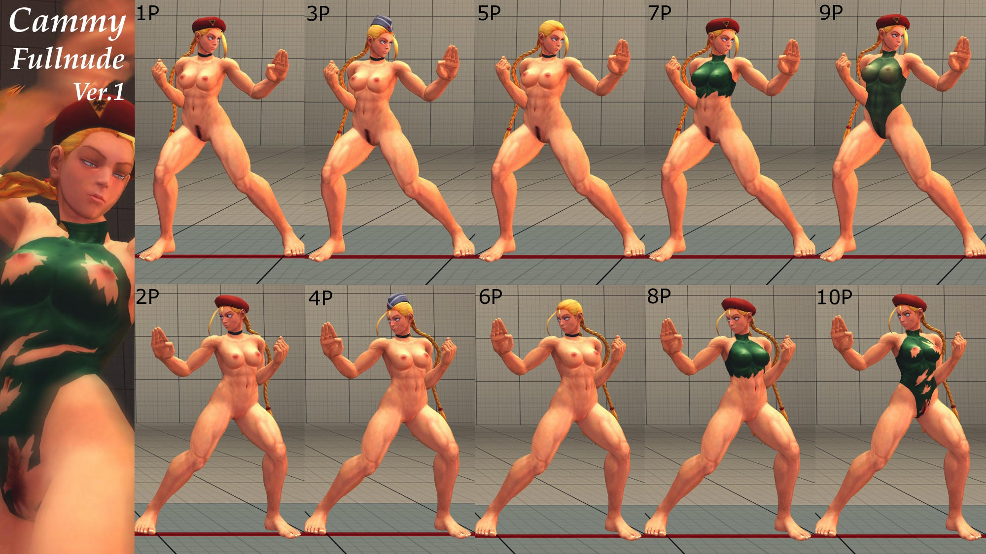 Street fighters nude hentia picture